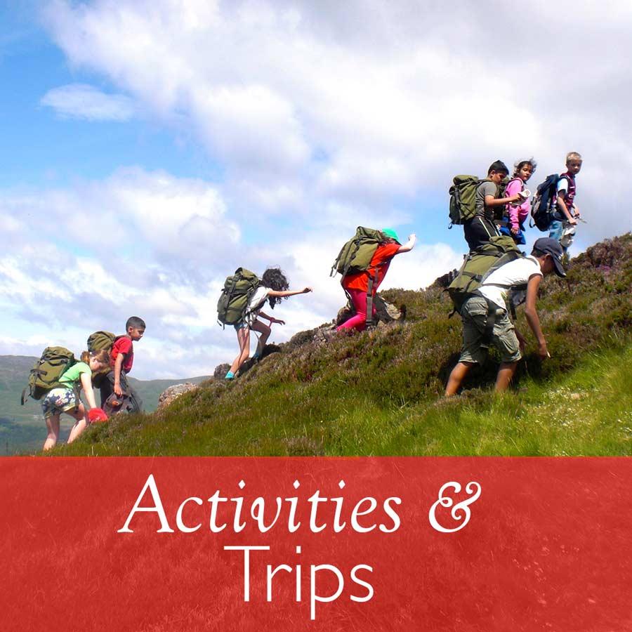 Activities & Trips